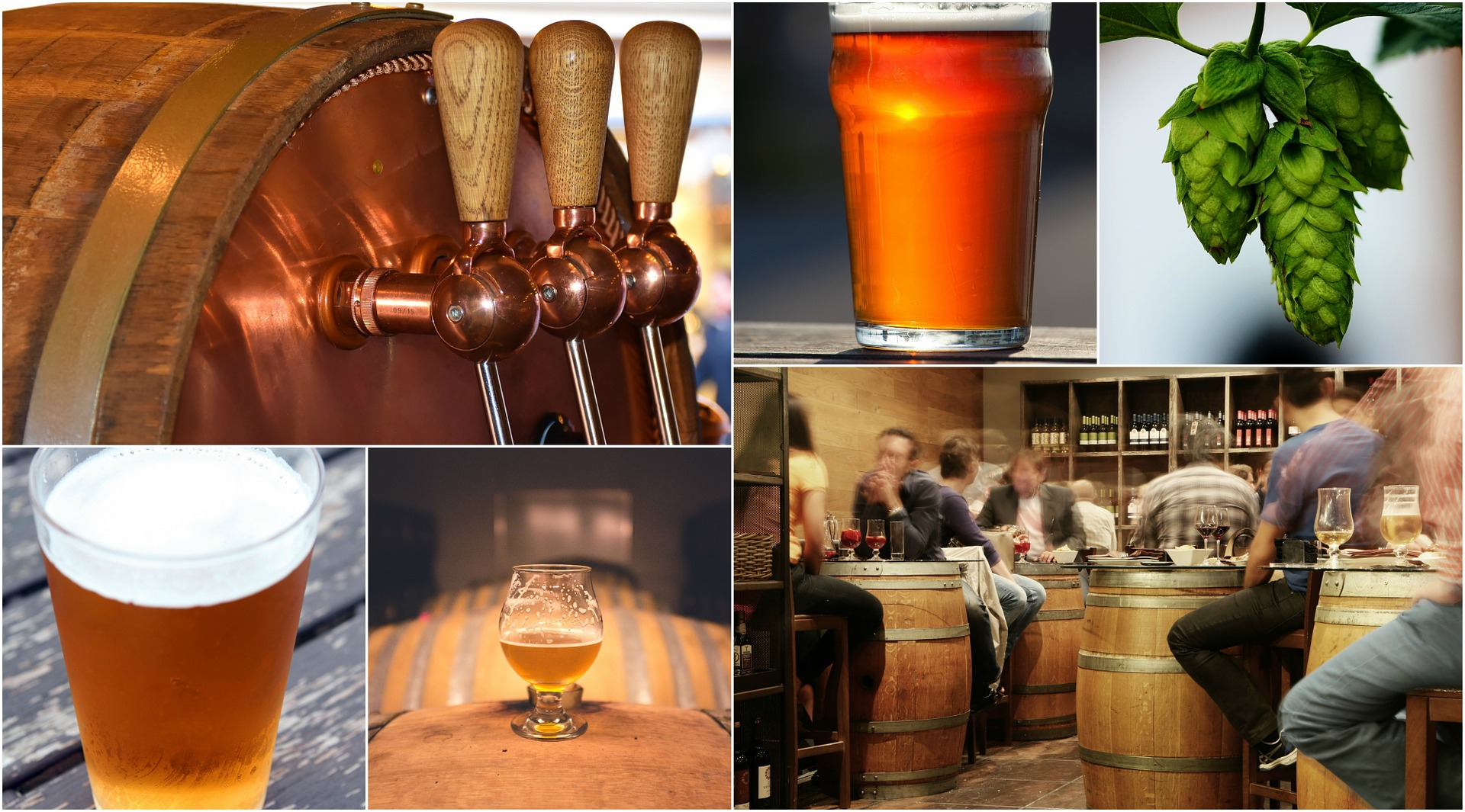 A collage of pictures that show how craft beer is made and enjoyed