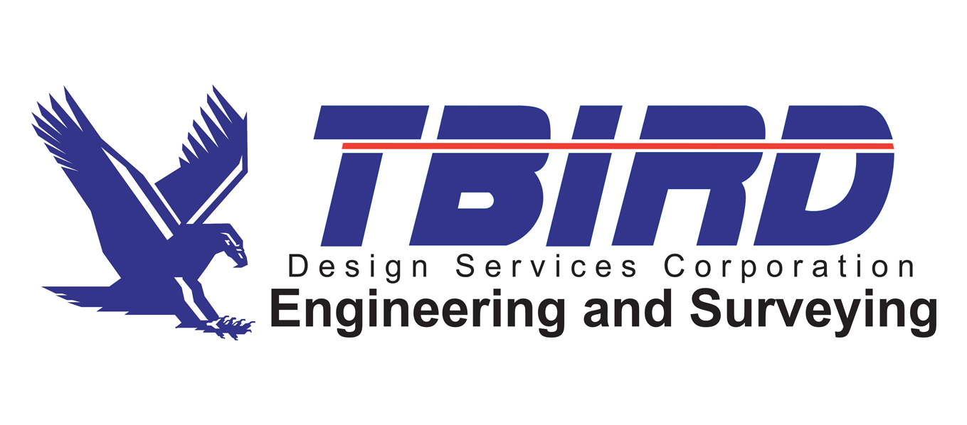 Tbird Design Services Corporation Logo
